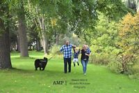 AMP Photography