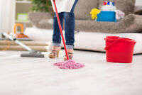 Professional House Cleaning Lady. Call 647 689 5103