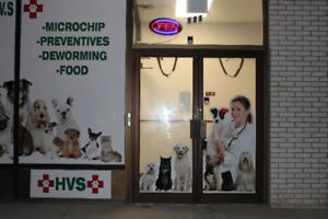 Vet services for pets - dogs and cats