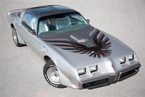 1979 Silver Limited Edition Anniversary Trans am 10th