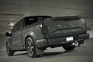 2015 f150 factory take off 20's
