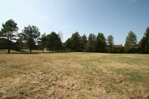 *****ONLY ONE LOT REMAINING Morrison St, Trout Creek*****