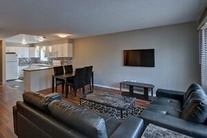SINGLE ROOMS AVAILABLE...146 Paul 4 Bed 2bath May1st$575 INC