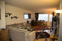 3 1/2 apartment (one bedroom) at forest hill, cote des neiges