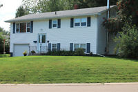 Updated move in ready home in Riverview