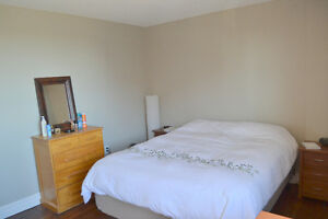 Large bedrooms in a furnished 2 BDR apartment available Jan 1st Kitchener / Waterloo Kitchener Area image 4