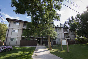Beautifully Finished Main Floor 2 Bdrm Condo in Niverville