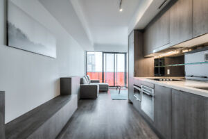 Brand New 3 Bedroom Condo for Short & Long Term Rental Downtown