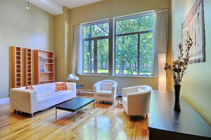 Amazing condo fully furnished for July & Aug (discounted!)