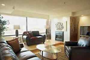 Pet Friendly Apt with Wow - July 1 - will cover damage deposit