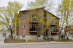 1 Bedroom 1 Bathroom Condo with 1 Parking Space in Hintonburg