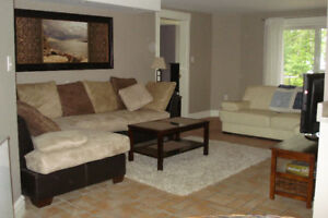 Nearly Town, Mostly Country: Lakeside  Flat for rent
