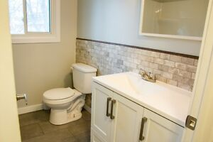 Gorgeous Home for 1st time buyers or investors Kitchener / Waterloo Kitchener Area image 6