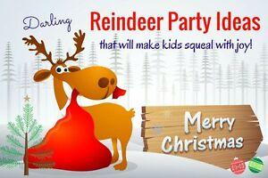 Uk Wholesale Reindeer Food