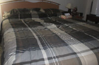 Moving sale: Complete bed set (Queen)