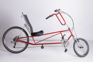 Tour Easy Recumbent by Easy Racers