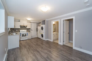 Brand New Basement Suite 1 BR in Fraser Heights