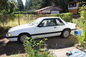 1990 MustangXL 2.3 L Great shape! Check out all the pictures!!!