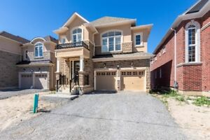 House rent in Ancaster