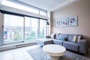 1BR Furnished - Flexible 4 to 8 month lease! #427