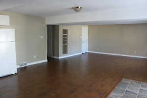 1 Bedroom Apartment. Available January 1st Cambridge Kitchener Area image 2