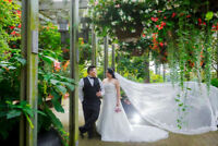 Your Photographer and Videographer- 905 598 8737