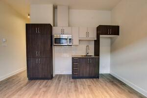 Magnifique loft à aire ouverte disponible au Loft51