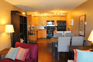 Executive-style, Beautiful Downtown Apartment - Fully Furnished