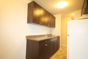 FULLY RENOVATED 1 BDRM UNITS - UTILITIES AND PARKING INCLUDED!!