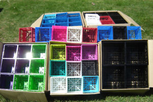 BRAND NEW STACKABLE MULTI COLOUR CD CRATES $20.00 PER CASE!!