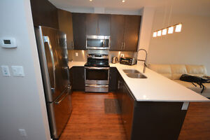 New Condo for Rent in Downtown Kitchener Kitchener / Waterloo Kitchener Area image 2