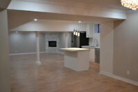 Professional Renovation: basement, kitchen, bathroom and more!