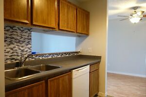 Affordable 2 Bedroom Apartment in Clareview near Kirkness School