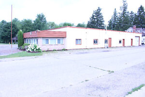 Auto Dealer partnership; w/my 80 Car lot W/repair shop-offices Kitchener / Waterloo Kitchener Area image 3