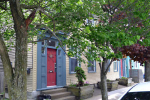 Bright, Beautiful & Historic North End Home For Rent