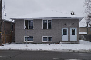 New Fourplex for rent in Minnow Lake
