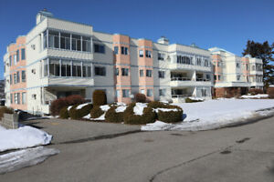 Move-in Ready, Immaculate Condo - $318,000