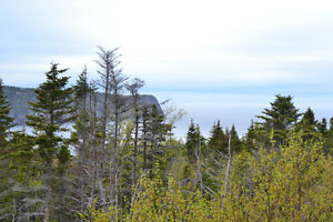 Million Dollar View - Flatrock St. John's Newfoundland image 8
