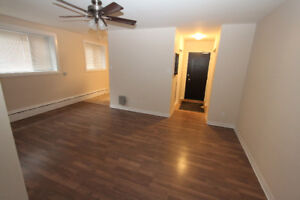 Completely Renovated 1 Bedroom in West Broadway