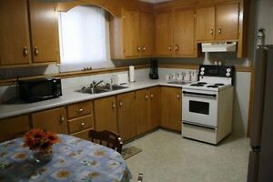 COZY ONE BEDROOM FULLY FURNISHED BASEMENT APARTMENT