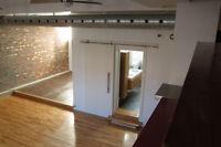 Appartement spectaculaire style loft dans le vieux Rosemont