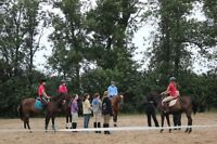 horseback riding lessons certified coach