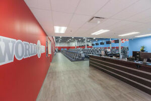 8 Month Personal Training Package at World Gym! Cambridge Kitchener Area image 1
