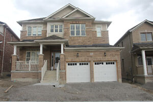 Brand new home in Alliston for rent!