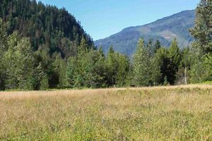 2524 Mabel Lake (Lot B) Road, Enderby - 80 acres of beauty!
