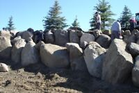 Best time to install trees and sod!  Edmonton Stone