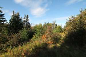 15 Acres of Land for Sale in Holyrood - On River!