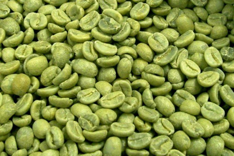 100% Jamaican Blue Mountain Green Unroasted coffee beans 2.5
