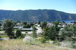 View Lots overlooking the Little Shuswap