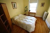 Lumineuse chambre à louer près du plateau. 1ier mars